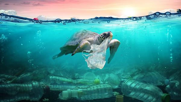 plastic-pollution-romolatavani-1068x601_600x600